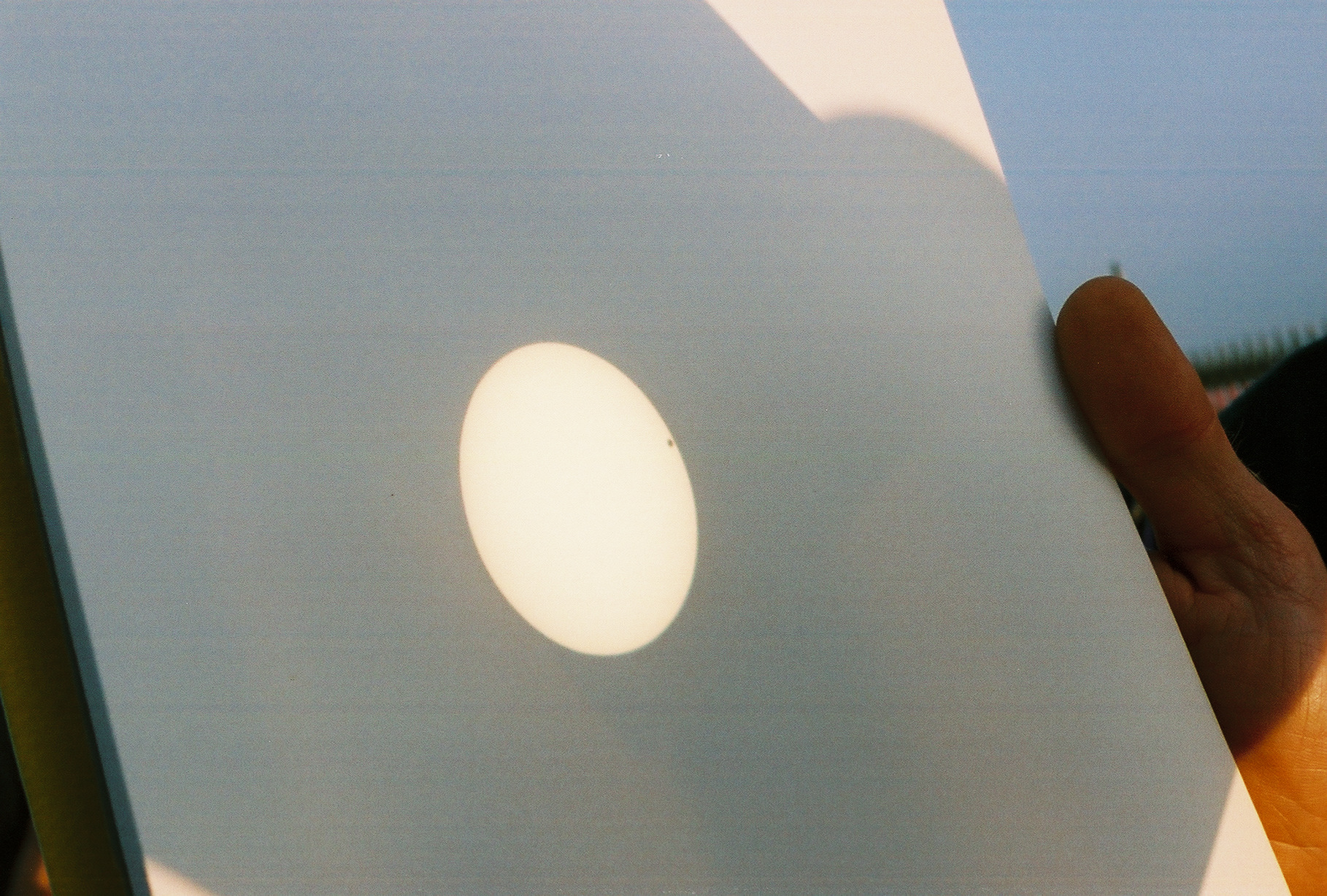 Transit of Venus image, projected on a white card